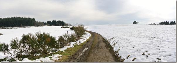 Traumpfad Wacholderweg - Offene Heide