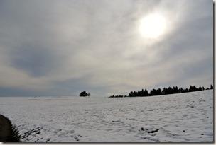 Traumpfad Wacholderweg - Wintersonne