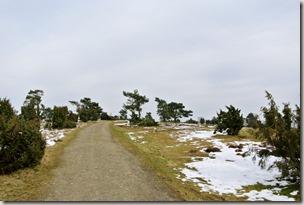 Traumpfad Wacholderweg - Heideweg