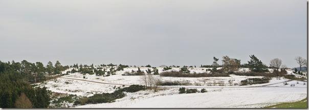 Traumpfad Wacholderweg - Blick auf die Wabelsberger Heide