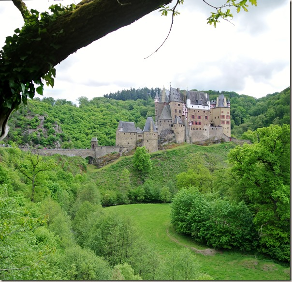 Burg Eltz Traumpfad Eltzer Burgpanorama - Burg mit Ast