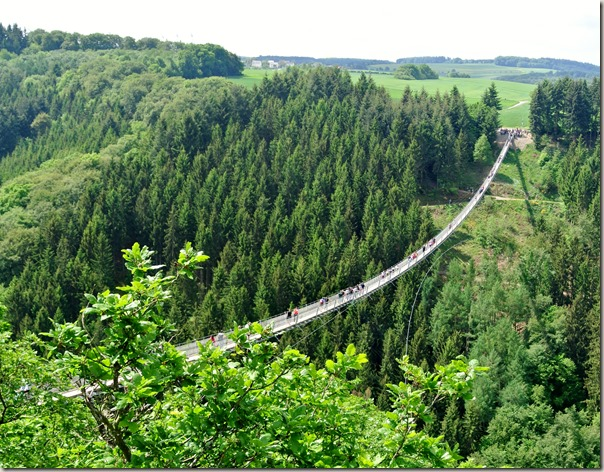Geierlay - Blick auf die Hängeseilbrücke