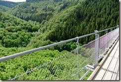 Geierlay - Blick ins Tal