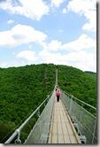 Geierlay - Brücke und Himmel