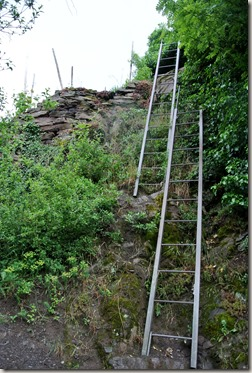 Calmont Klettersteig - Doppel-Leiter