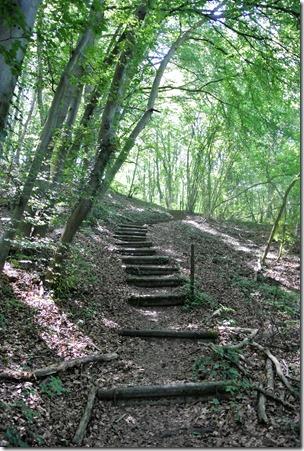Moselsteig Palzem - Nittel - Treppe im Wald
