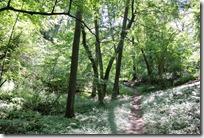 Moselsteig Palzem - Nittel - Wald