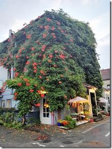 Moselsteig–Etappe 3: Nittel–Konz - Hotel Mühlentahlers Park Hotel