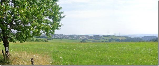 Moselsteig Konz - Trier - Blick über Wiesen