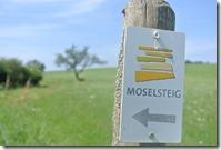 Moselsteig Konz - Trier - Moselsteig Wegweiser