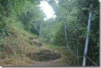 Moselsteig–Etappe 3: Nittel–Konz - Aufstieg
