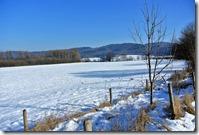 Laacher See - Winterlandschaft