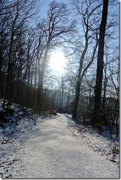 Laacher See - Weg im Winter
