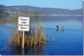 Laacher See - Bitte nicht füttern