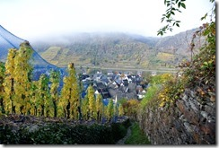 Traumpfad Bleidenberger Ausblicke - Blick auf Oberfell