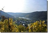 Traumpfad Bleidenberger Ausblicke - Moselherbst