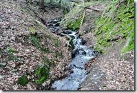 Fürstenweg -  ein Bachlauf