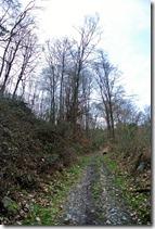 Fürstenweg -  Weg aus dem Tal