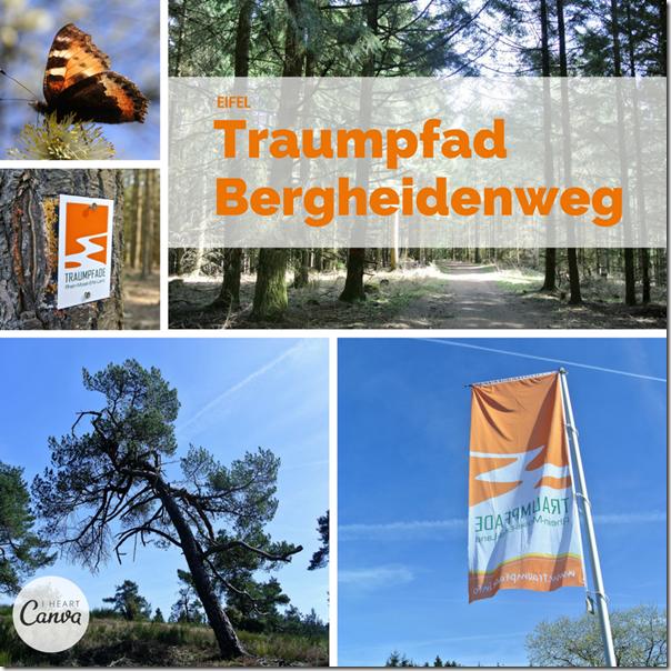 Traumpfad Bergheidenweg - Teaser