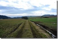 Wiesenweg Kürrenberg - Feldweg