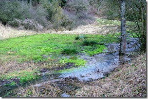 Wiesenweg Kürrenberg - Wasser