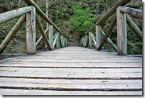 Grafschaft Pfad Manderscheid - Holzbrücke