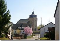 Grafschaft Pfad Manderscheid - Laufeld