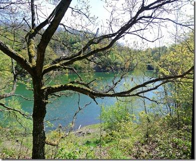Vinxtbachtal Extratour - See zwischen Bäumen