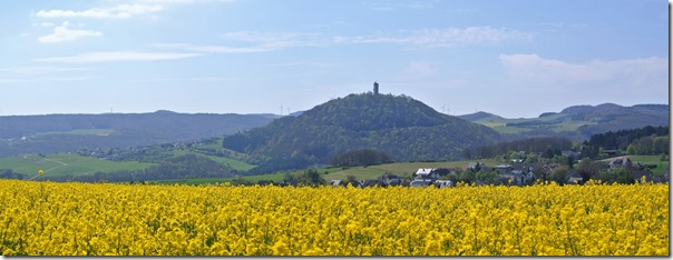 Vinxtbachtal Extratour - Tal und Burg Olbrück