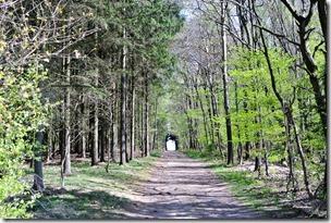 Vinxtbachtal Extratour - Waldweg