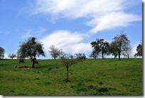 Vinxtbachtal Extratour - Wolkenspiel
