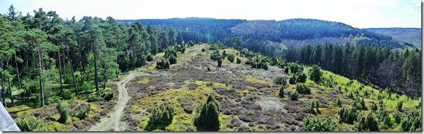Vinxtbachtal Extratour - Blick auf die Heide