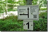 Höhenweg Laacher See - Wegegabelung