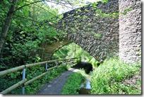Traumpfad Monrealer Ritterschlag - Alte Brücke
