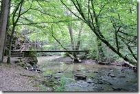 Traumpfad Pyrmonter Felsensteig - Brücke über die Elz