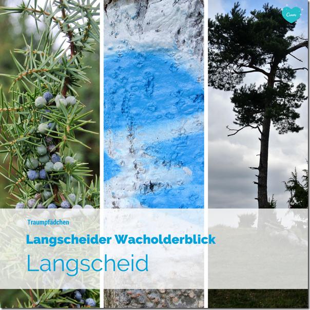 Traumpfädchen Langscheider Wacholderblick - Teaser