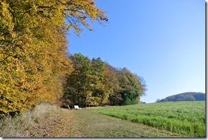 Traumpfädchen Riedener Seeblick - Herbstfarben