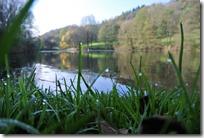 Traumpfädchen Riedener Seeblick - Der See ist erreicht