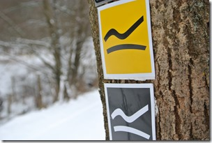 Rothaarsteig Spur Oberhundemer Bergtour -Wegelogo