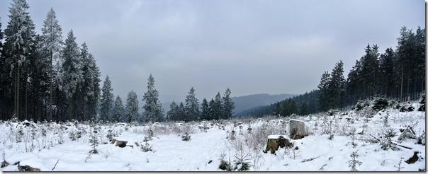 Rothaarsteig Spur Wisent-Pfad - Winterpanorama