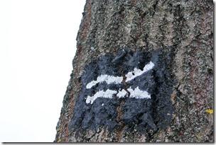Rothaarsteig Spur Wisent-Pfad - Logo