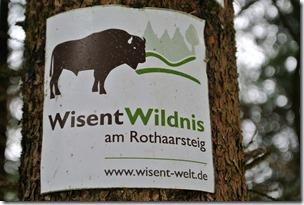 Rothaarsteig Spur Wisent-Pfad - Logo der Wisent Wildnis