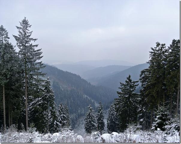 Rothaarsteig Spur Wisent-Pfad - Blick ins Tal