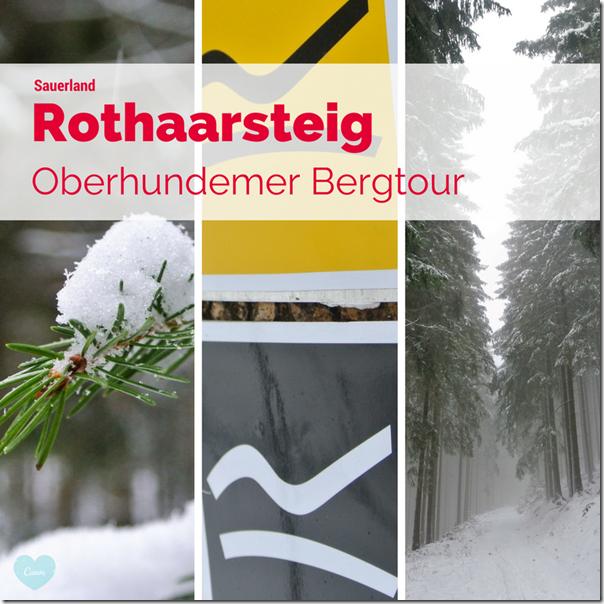 Rothaarsteig Spur Oberhundemer Bergtour -Teaser