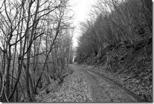 Moselsteig Seitensprung Borjer Ortsbachpädche - Winterweg?