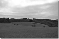 Moselsteig Seitensprung Borjer Ortsbachpädche - Hunsrücklandschaft