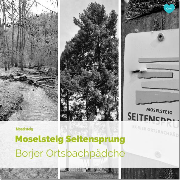 Moselsteig Seitensprung Borjer Ortsbachpädche - Teaser