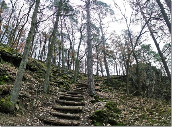 Traumschleife Murscher Eselsche - Treppen im Wald