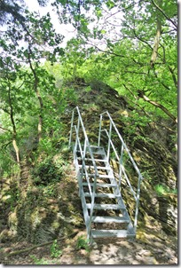 Seitensprungs Cochemer Ritterrunde - Leiter im Wald