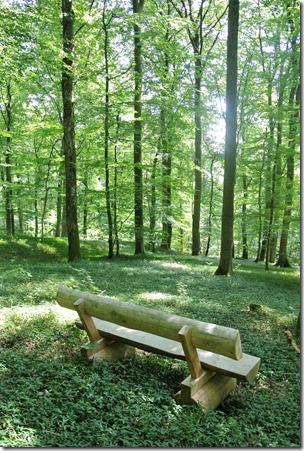 Traumpfad Hochbermeler - Rastplatz im Wald